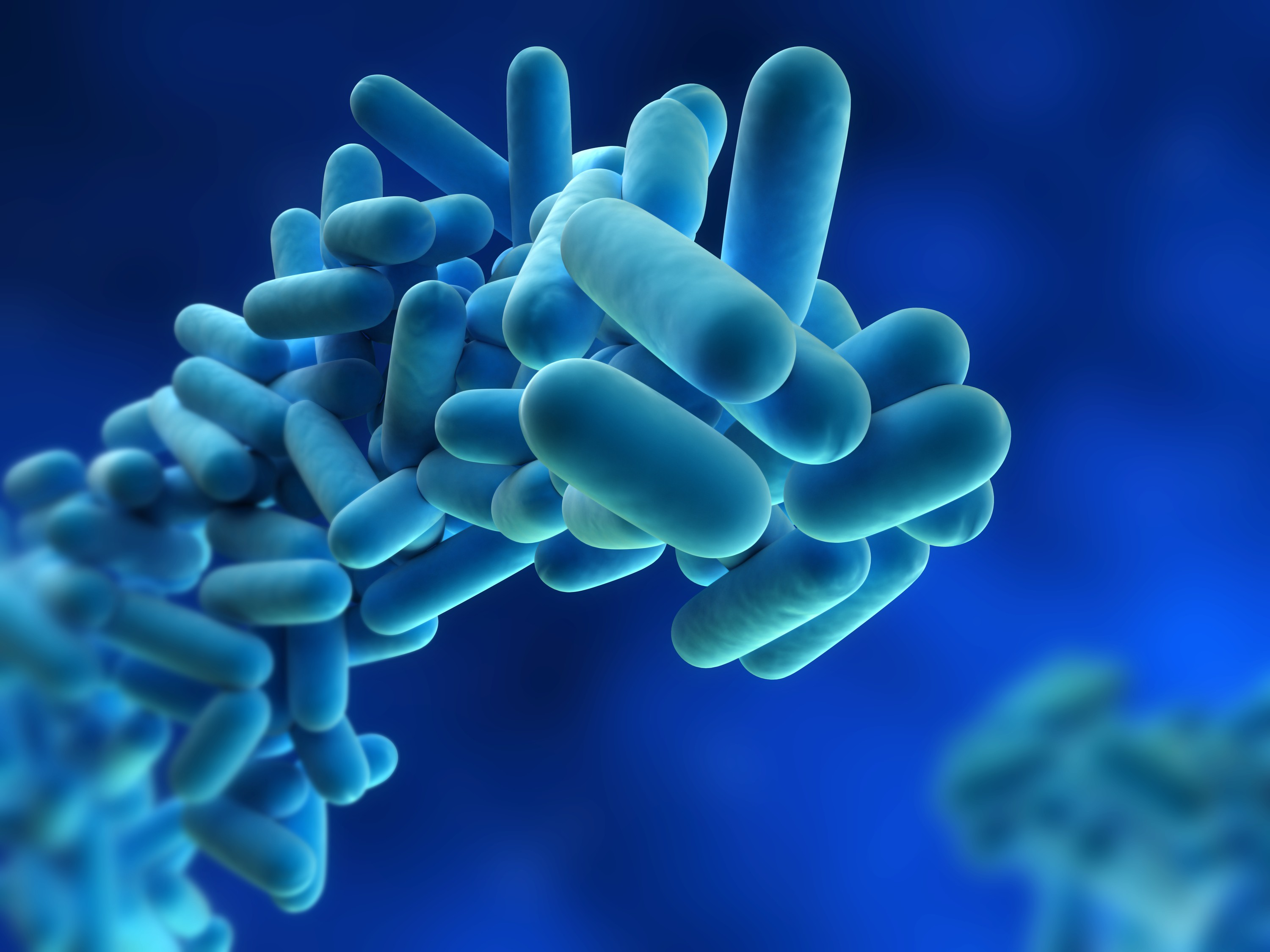Legionella Risk Assessment Companies