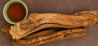 All You Need to Know About Ayahuasca and The Ayahuasca Ceremony